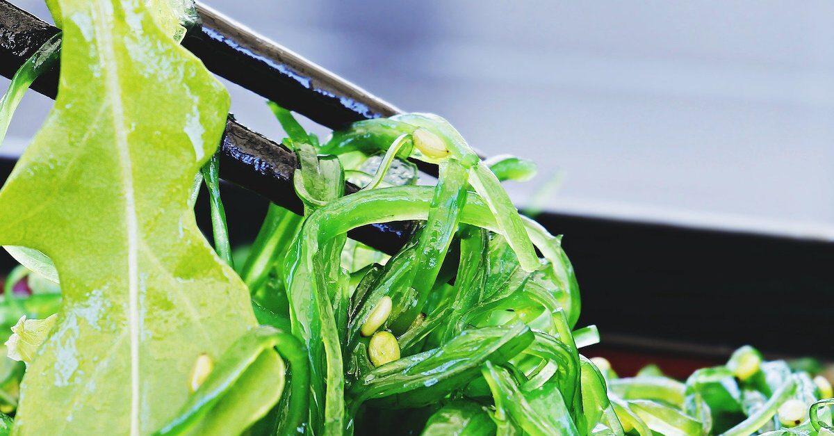 piatto di alghe wakame